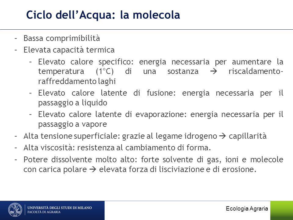 Ciclo dell'Acqua: la molecola
