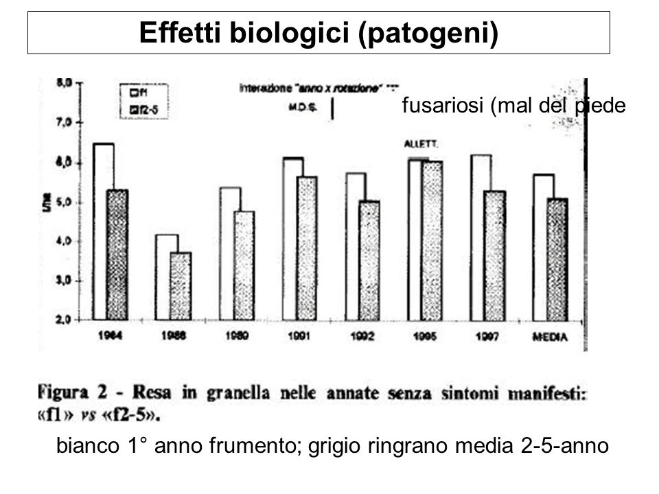 Effetti biologici (patogeni)