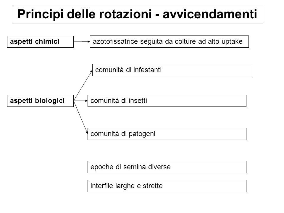 Principi delle rotazioni - avvicendamenti