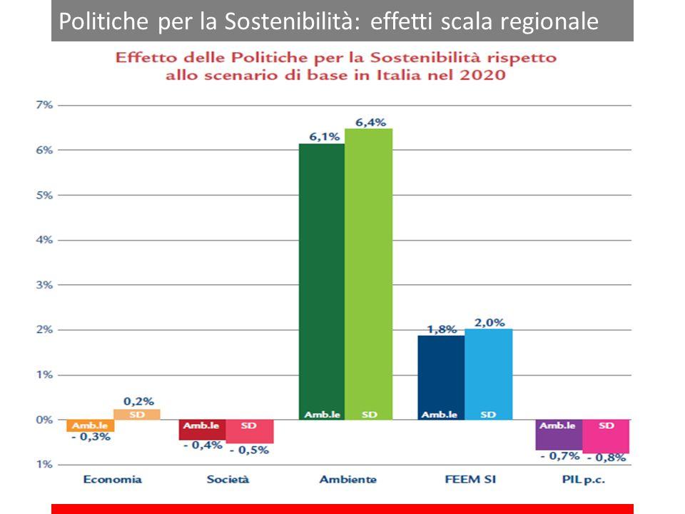 Politiche per la Sostenibilità: effetti scala regionale