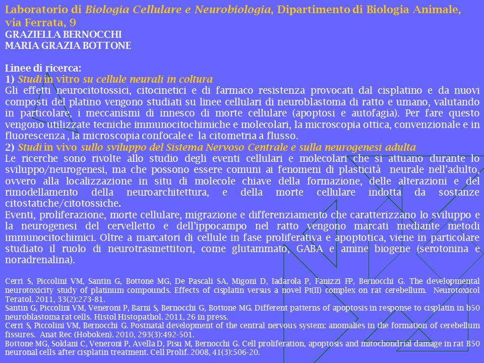 Laboratorio di Biologia Cellulare e Neurobiologia, Dipartimento di Biologia Animale, via Ferrata, 9
