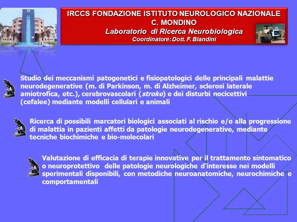 IRCCS FONDAZIONE ISTITUTO NEUROLOGICO NAZIONALE C. MONDINO