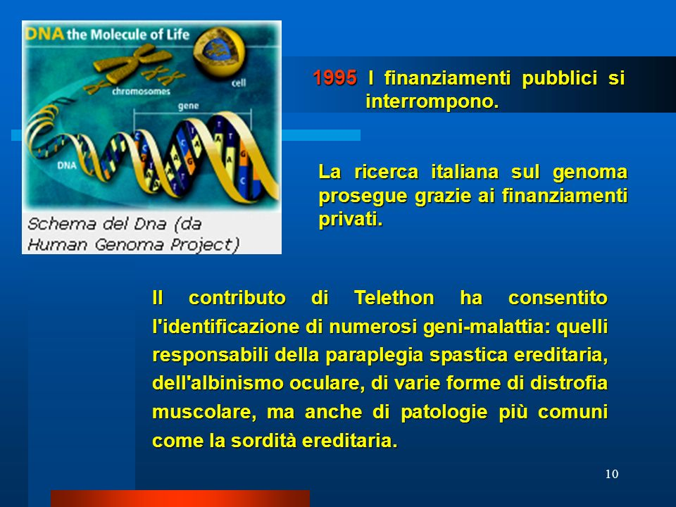 1995 I finanziamenti pubblici si interrompono.