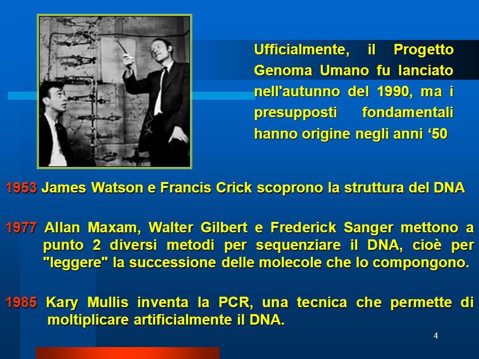 Ufficialmente, il Progetto Genoma Umano fu lanciato nell autunno del 1990, ma i presupposti fondamentali hanno origine negli anni '50