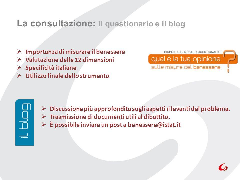 La consultazione: Il questionario e il blog