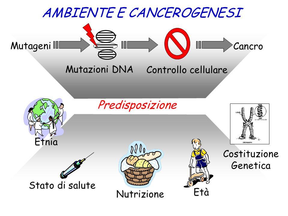 AMBIENTE E CANCEROGENESI