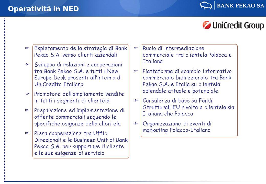 Operatività in NED Espletamento della strategia di Bank Pekao S.A. verso clienti aziendali.