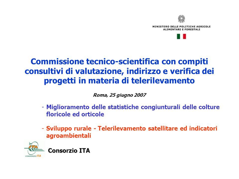 Commissione tecnico-scientifica con compiti consultivi di valutazione, indirizzo e verifica dei progetti in materia di telerilevamento