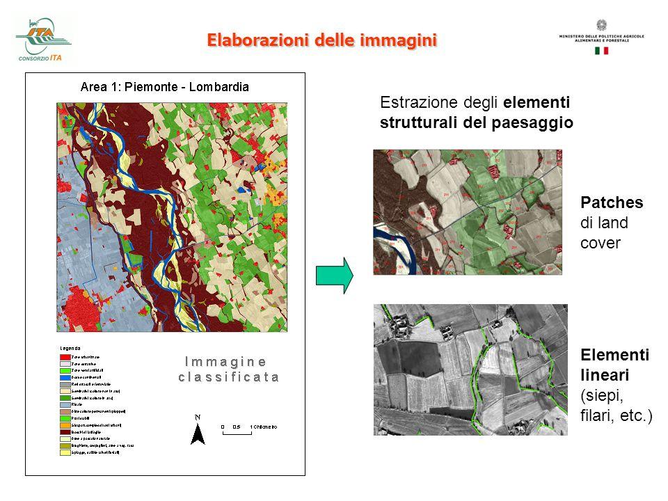 Elaborazioni delle immagini