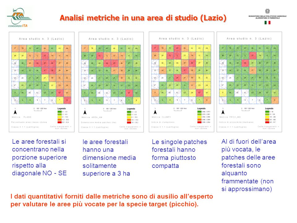 Analisi metriche in una area di studio (Lazio)