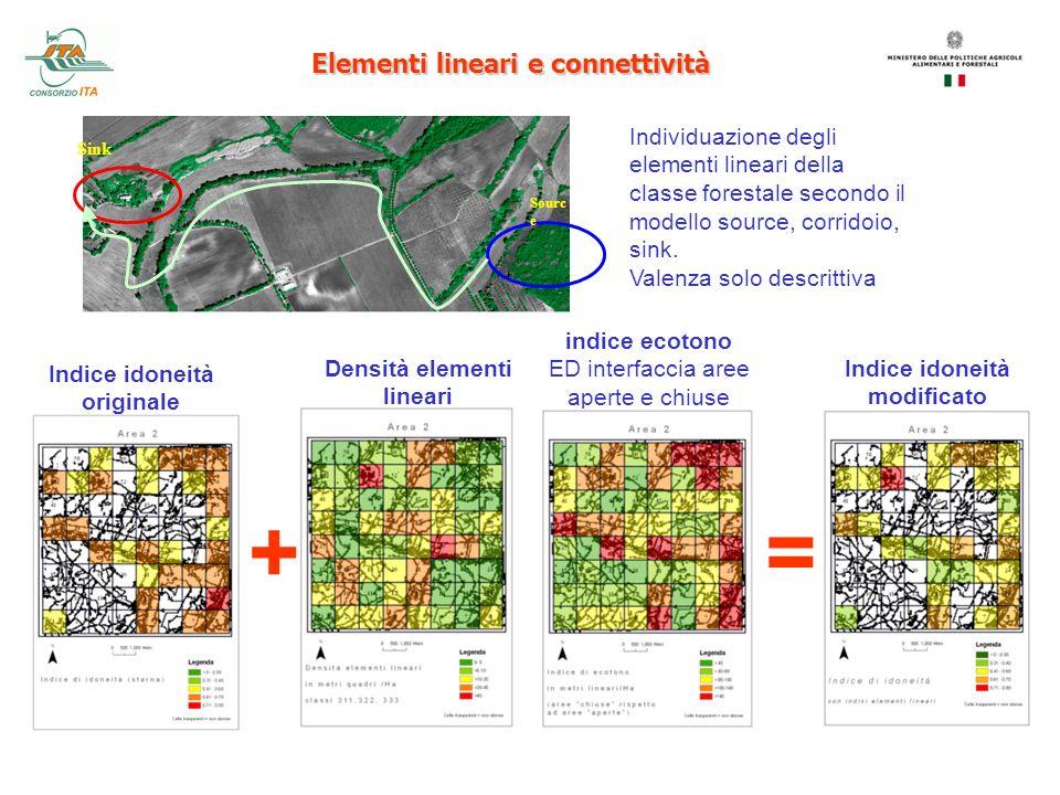 Elementi lineari e connettività