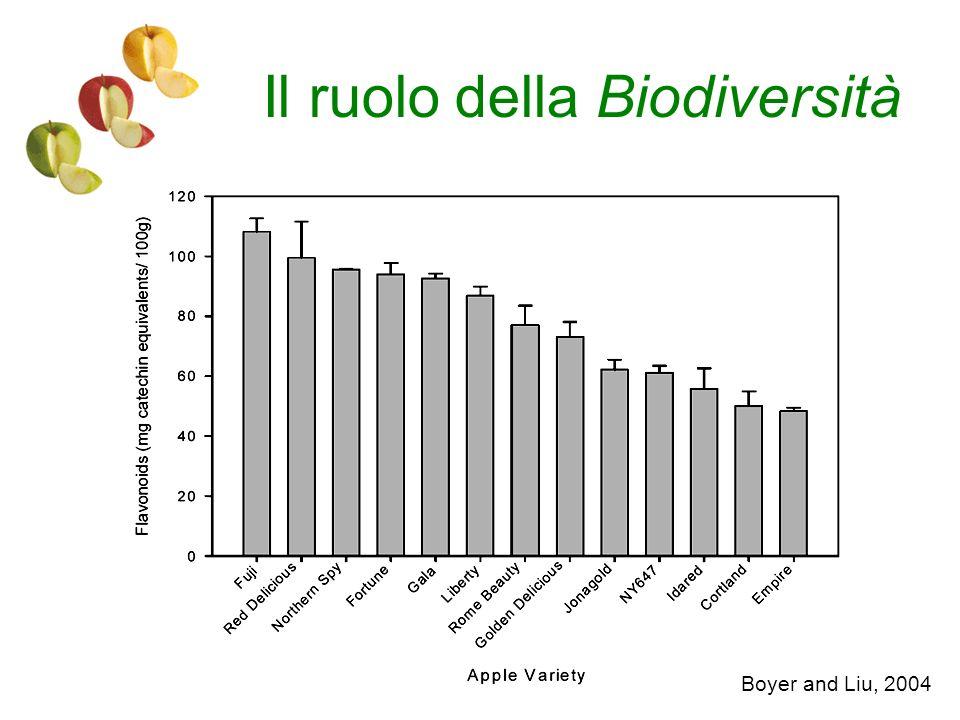 Il ruolo della Biodiversità