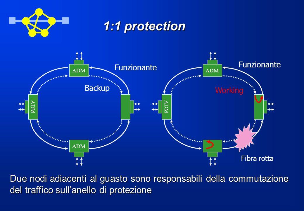 1:1 protection ADM. ADM. Funzionante. Funzionante. Backup. Working. ADM. ADM. ADM. Fibra rotta.
