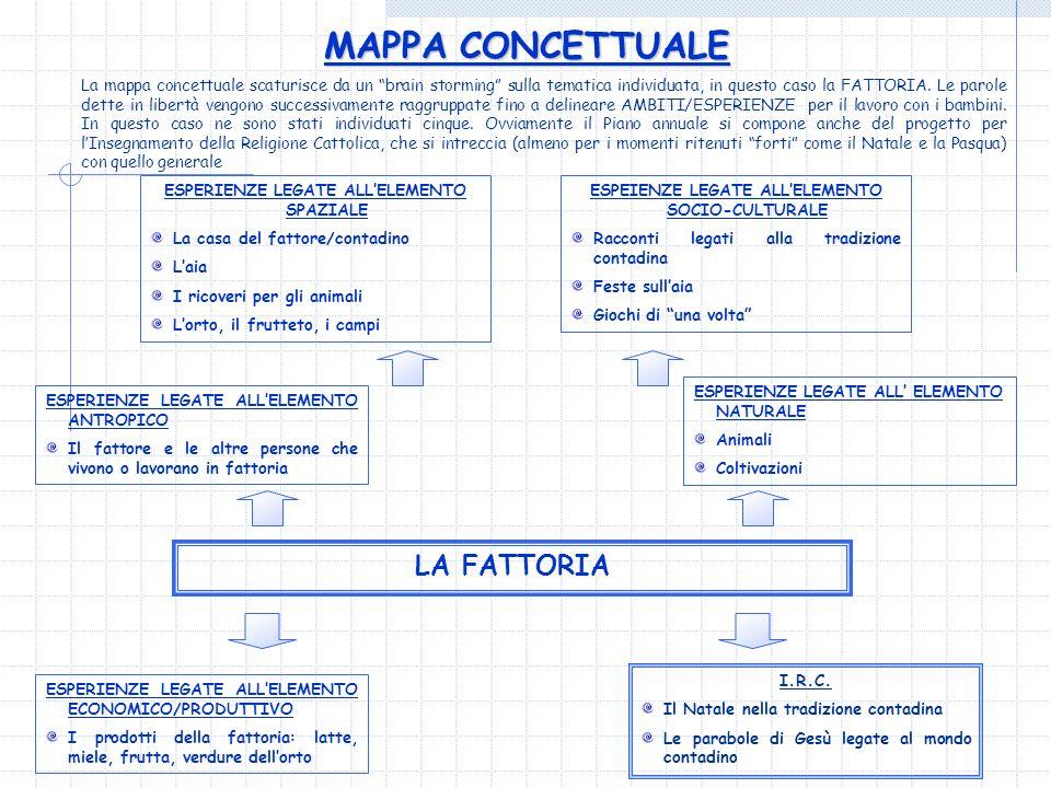 MAPPA CONCETTUALE LA FATTORIA