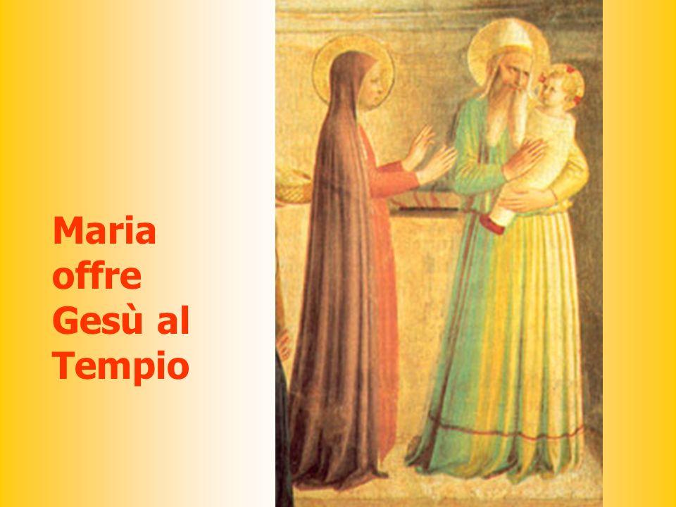 Maria offre Gesù al Tempio