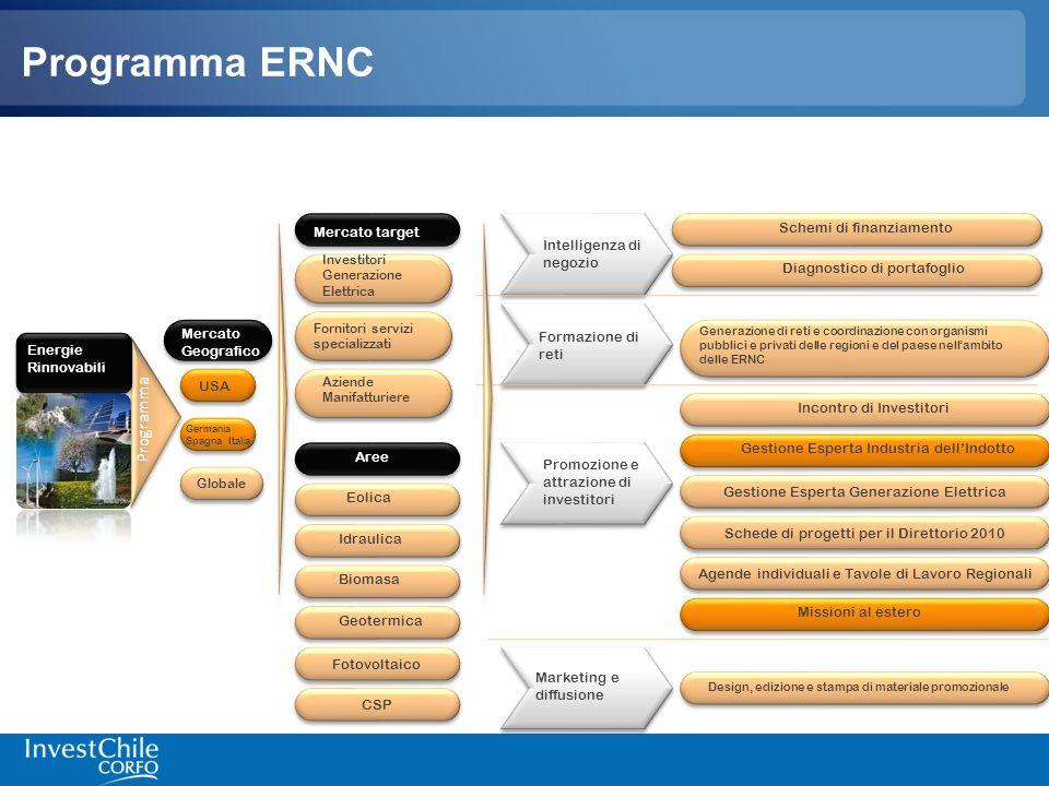 Programma ERNC Programma Schemi di finanziamento Mercato target