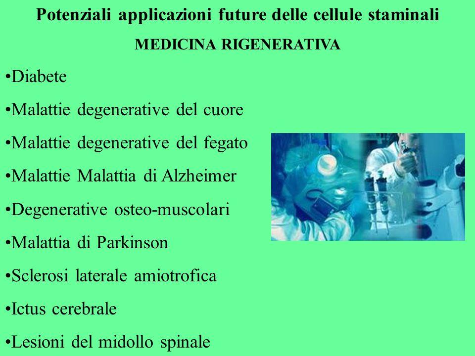 Potenziali applicazioni future delle cellule staminali
