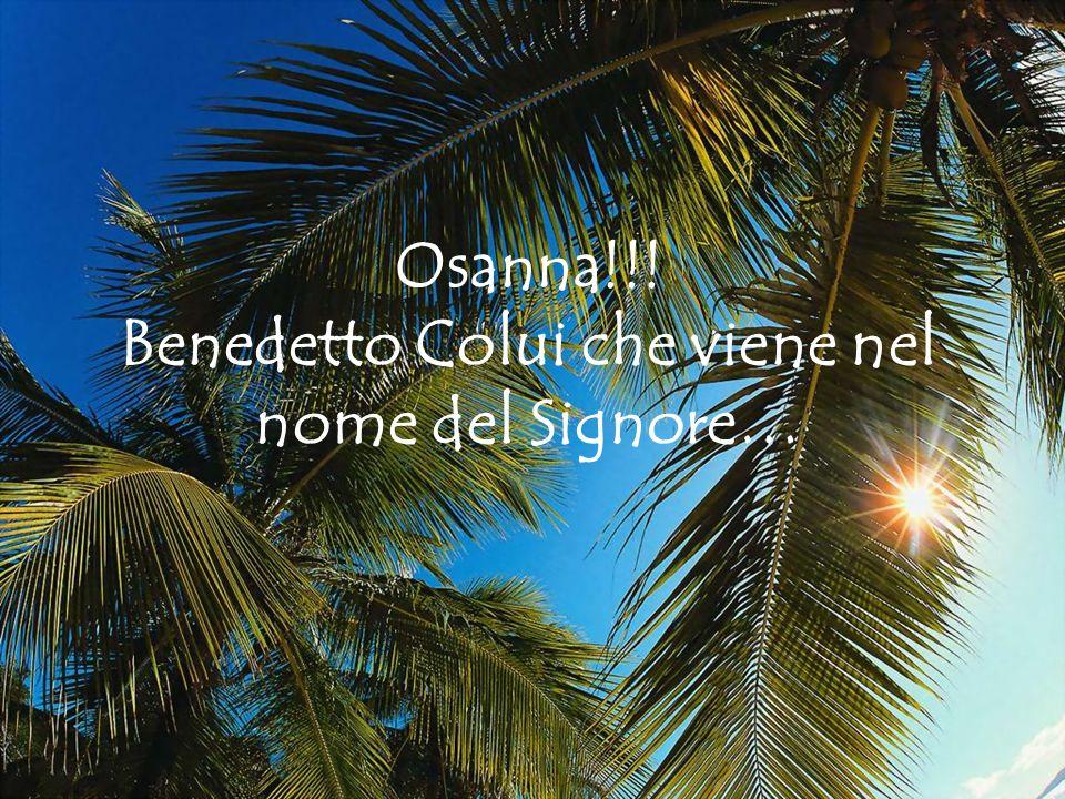 Osanna!!! Benedetto Colui che viene nel nome del Signore…