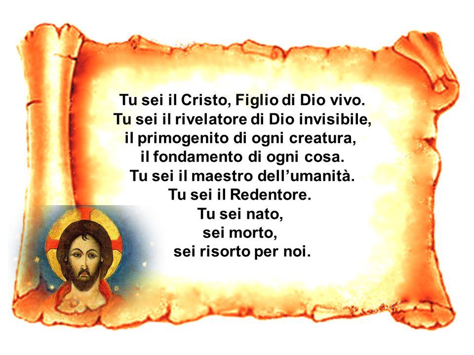 Tu sei il Cristo, Figlio di Dio vivo.