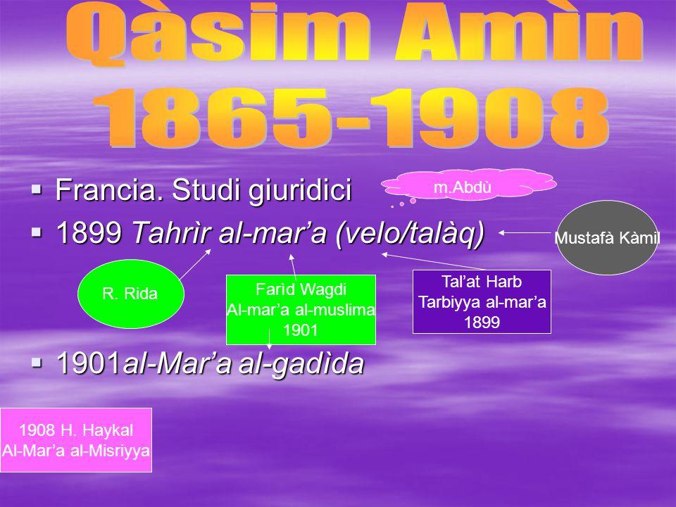 Qàsim Amìn 1865-1908 Francia. Studi giuridici