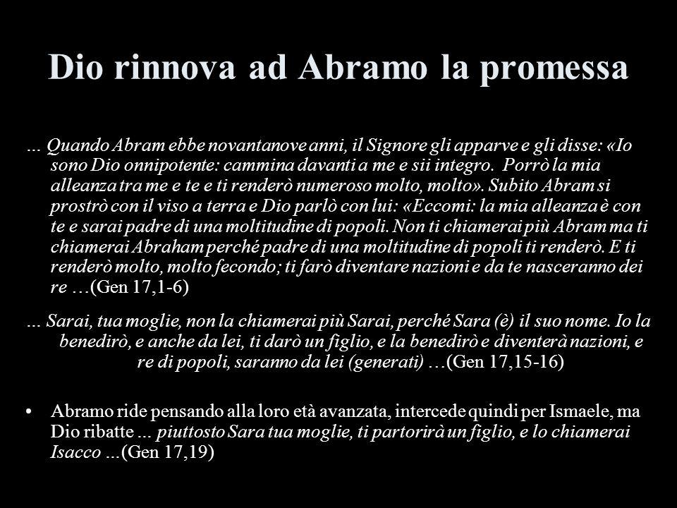 Dio rinnova ad Abramo la promessa