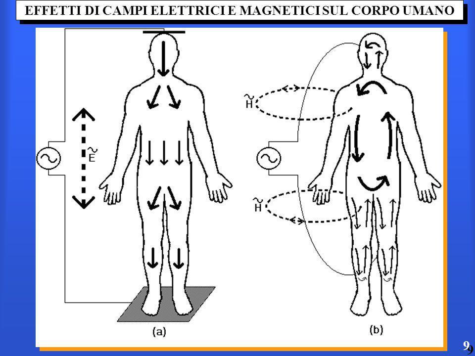 EFFETTI DI CAMPI ELETTRICI E MAGNETICI SUL CORPO UMANO