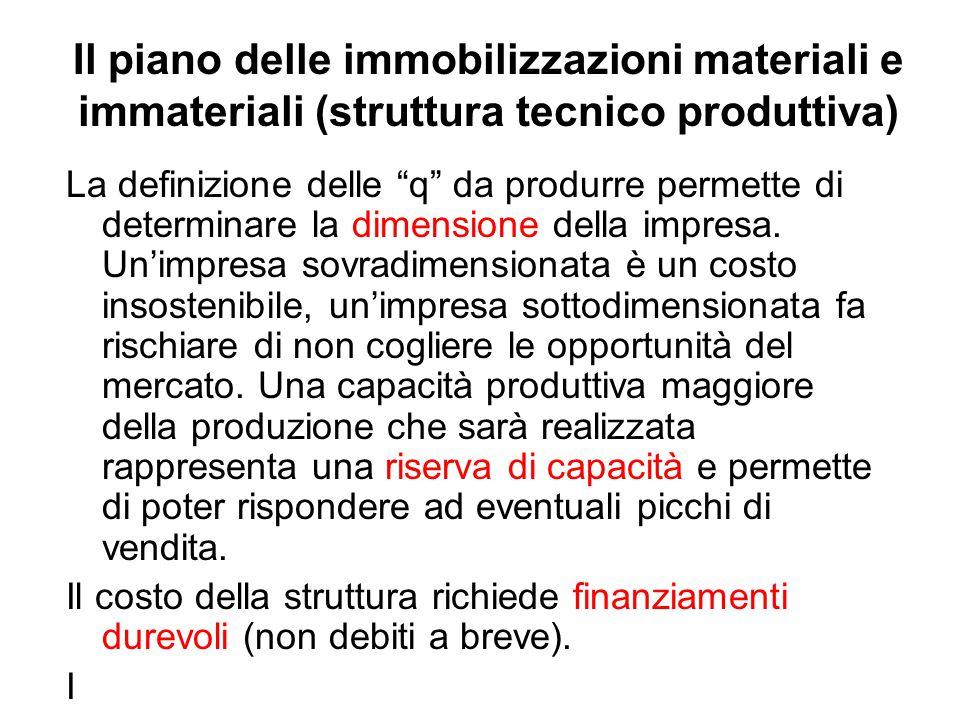 Il piano delle immobilizzazioni materiali e immateriali (struttura tecnico produttiva)