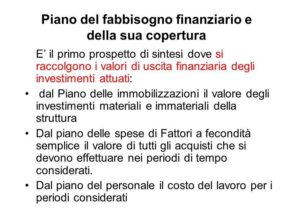 Piano del fabbisogno finanziario e della sua copertura