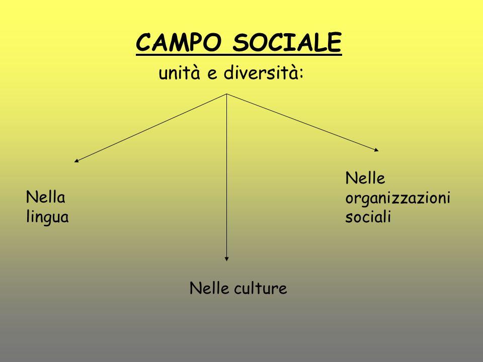 CAMPO SOCIALE unità e diversità: Nelle organizzazioni sociali