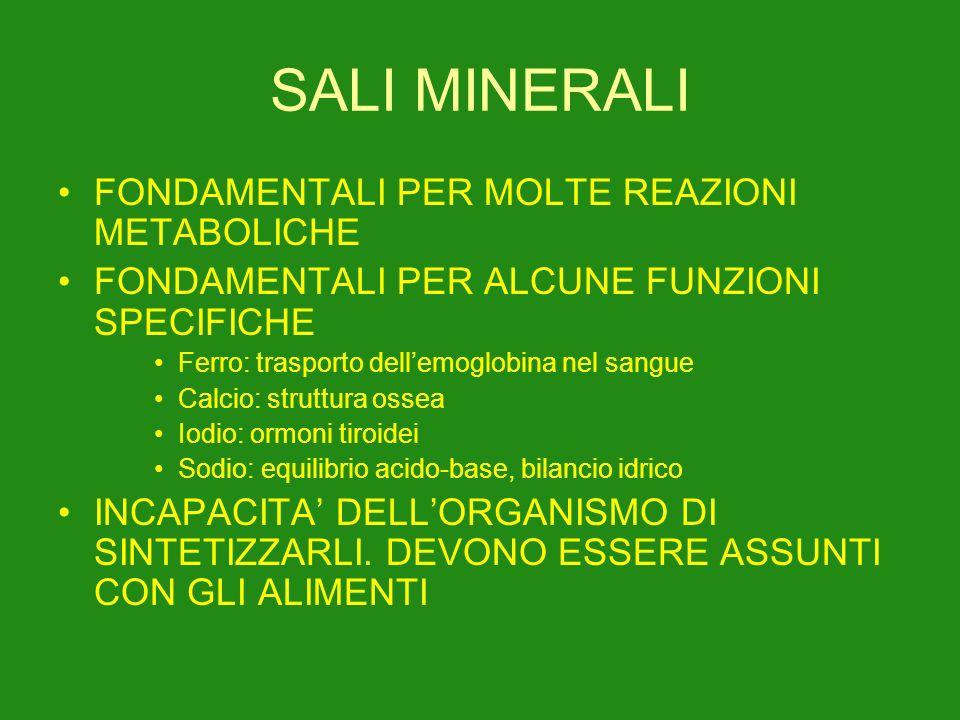 SALI MINERALI FONDAMENTALI PER MOLTE REAZIONI METABOLICHE