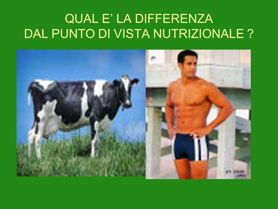 QUAL E' LA DIFFERENZA DAL PUNTO DI VISTA NUTRIZIONALE