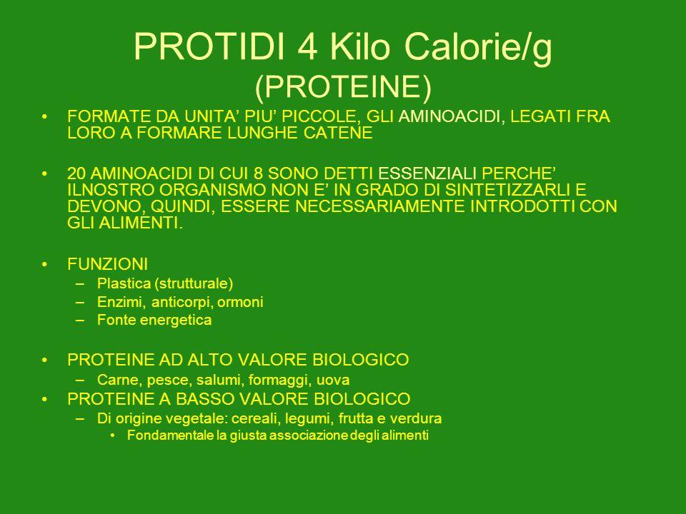 PROTIDI 4 Kilo Calorie/g (PROTEINE)