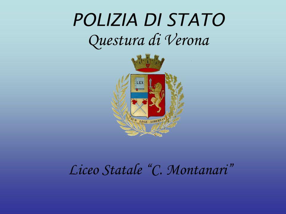 Liceo Statale C. Montanari