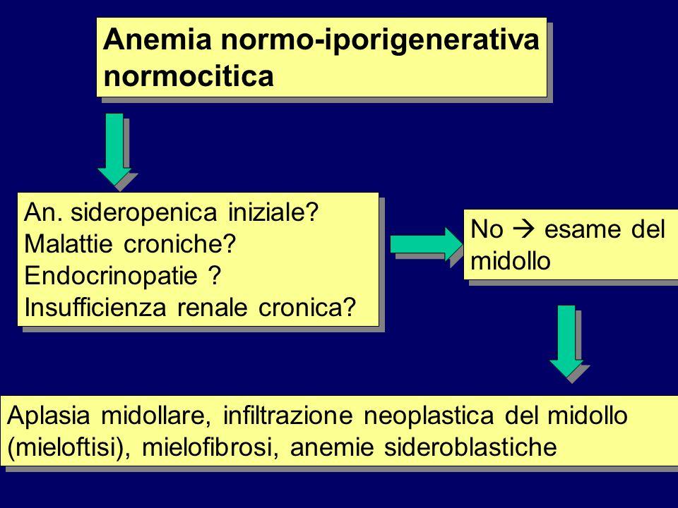Anemia normo-iporigenerativa normocitica