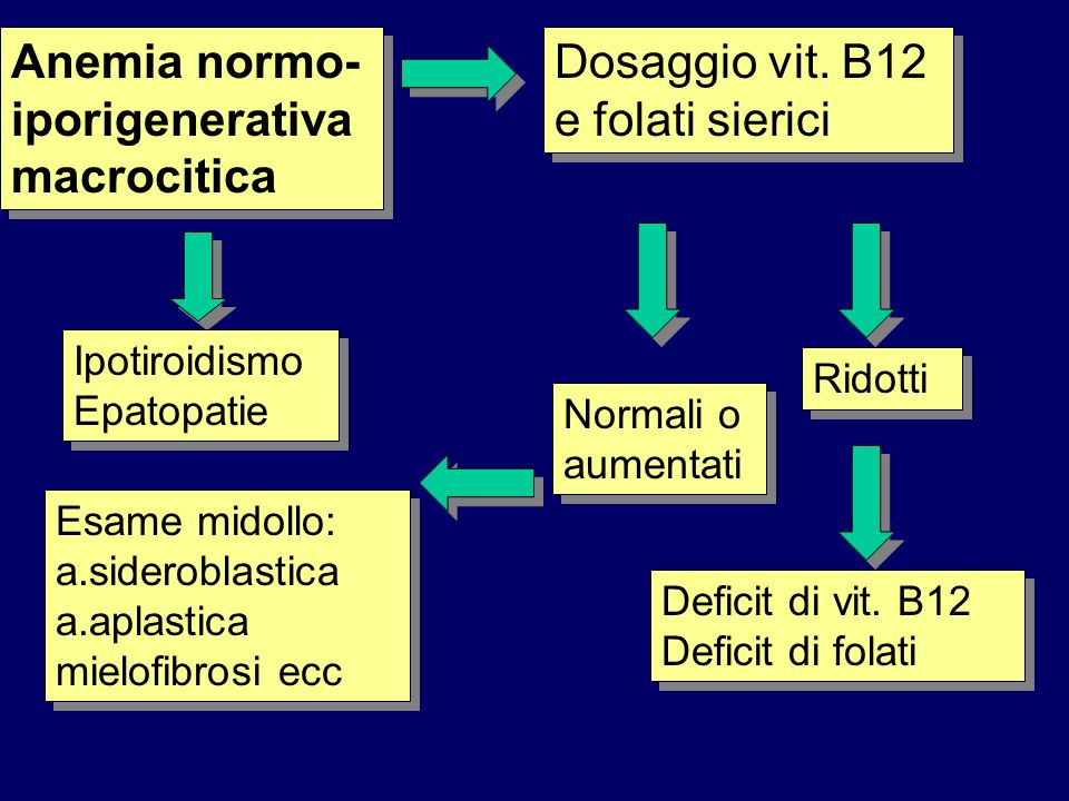 Anemia normo-iporigenerativa macrocitica