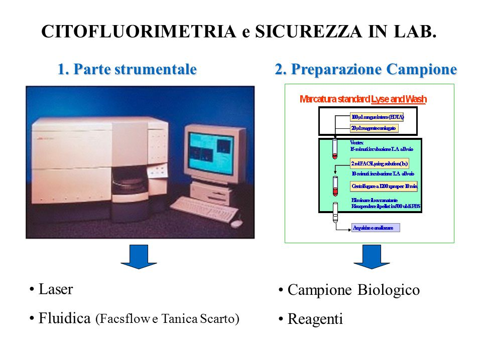 CITOFLUORIMETRIA e SICUREZZA IN LAB.