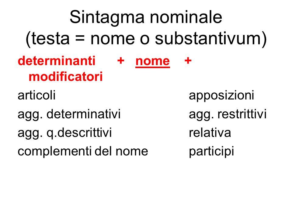 Sintagma nominale (testa = nome o substantivum)
