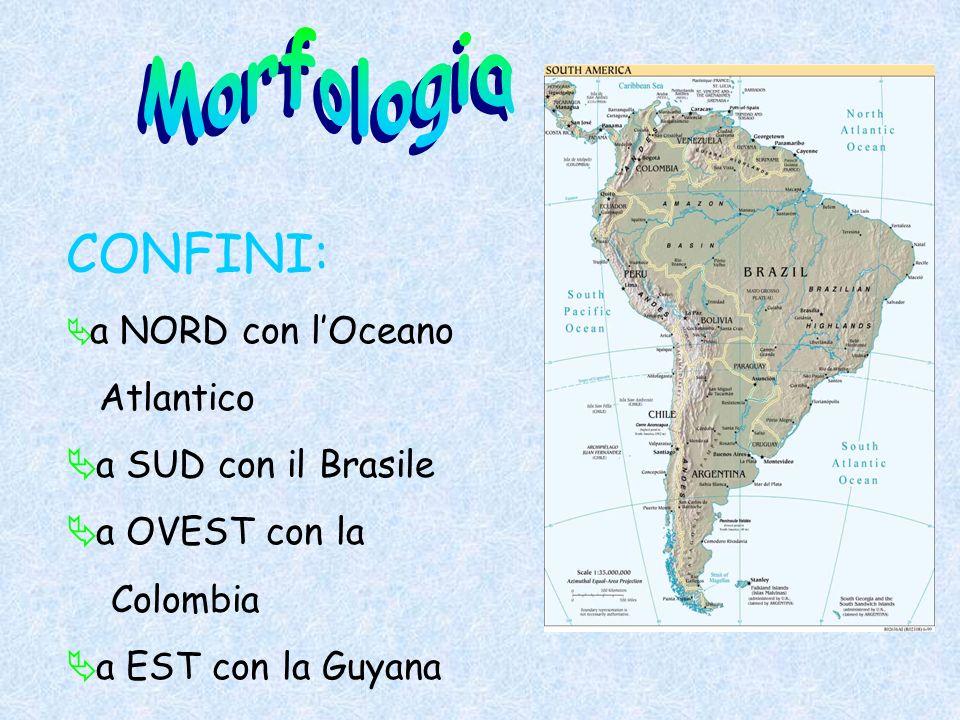Morfologia CONFINI: Atlantico a SUD con il Brasile a OVEST con la