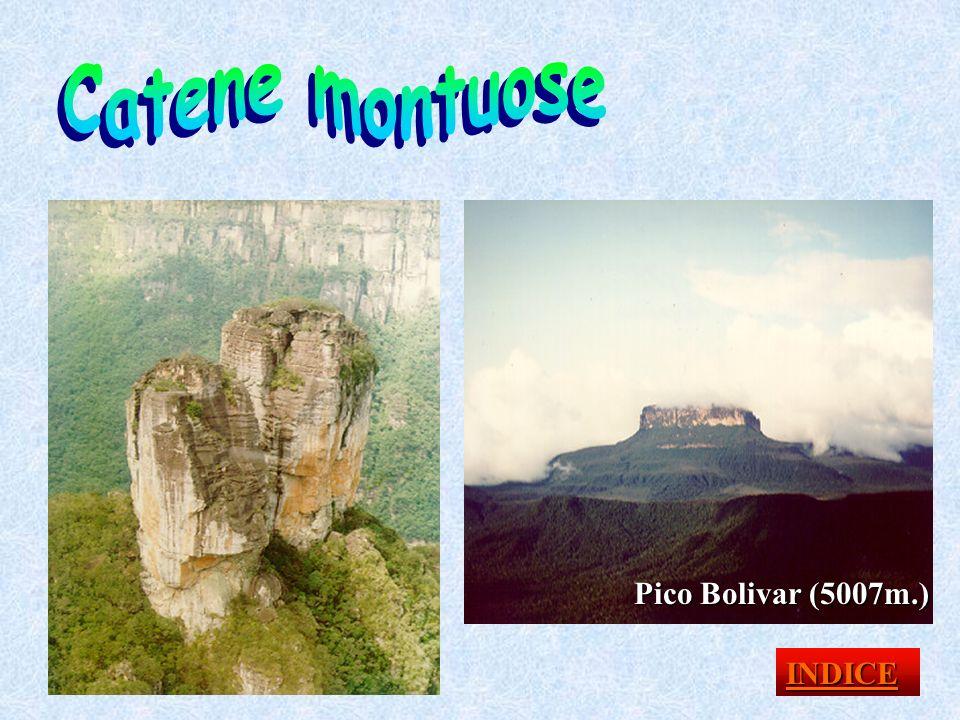 Catene montuose Pico Bolivar (5007m.) INDICE