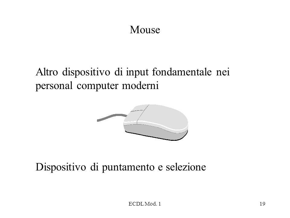 Altro dispositivo di input fondamentale nei personal computer moderni