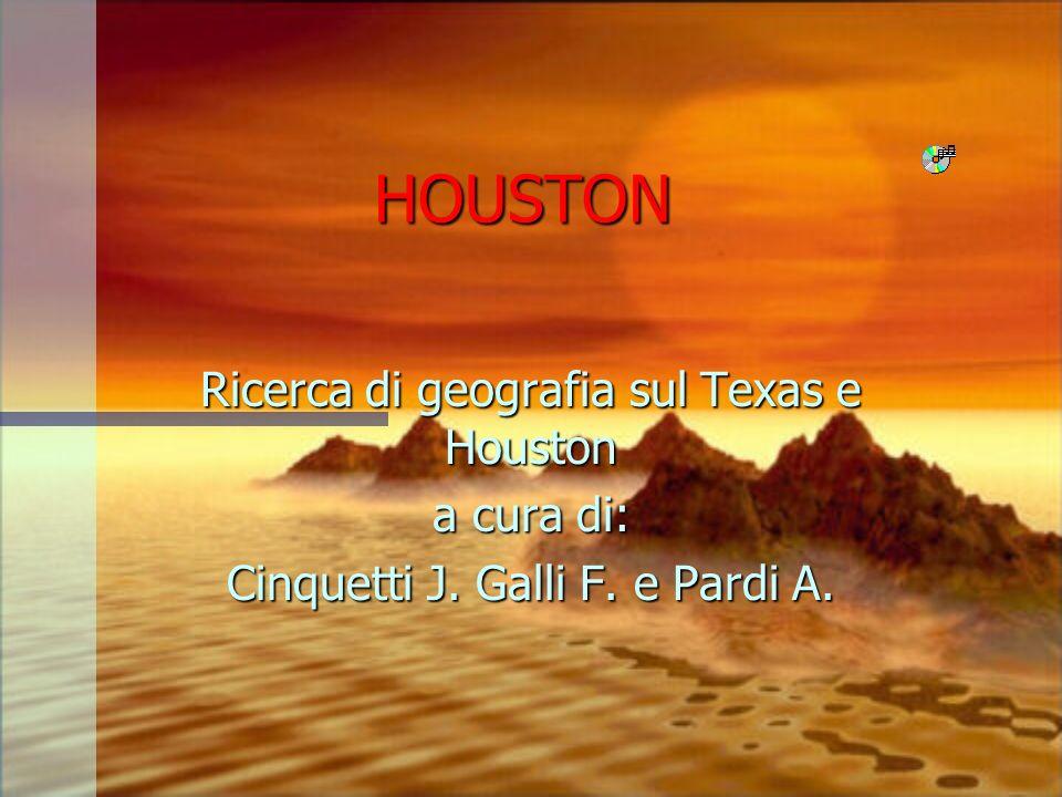 HOUSTON Ricerca di geografia sul Texas e Houston a cura di: