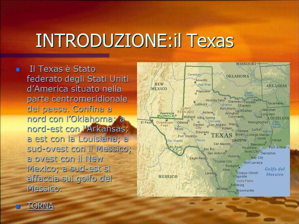 INTRODUZIONE:il Texas