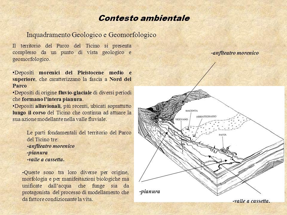 Contesto ambientale Inquadramento Geologico e Geomorfologico