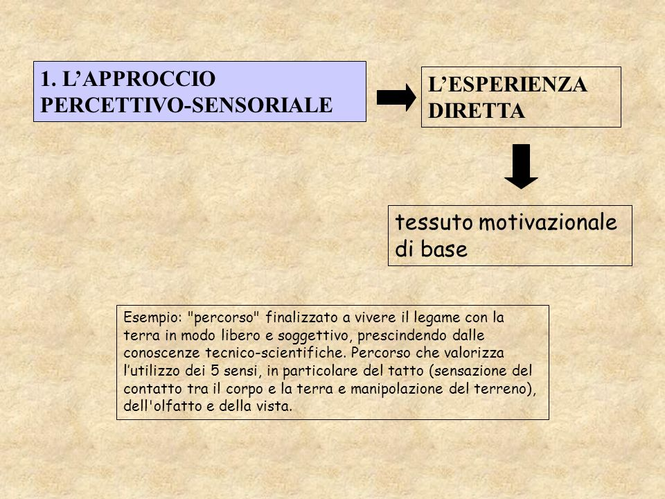 1. L'APPROCCIO PERCETTIVO-SENSORIALE L'ESPERIENZA DIRETTA