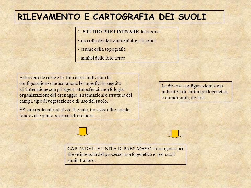 RILEVAMENTO E CARTOGRAFIA DEI SUOLI