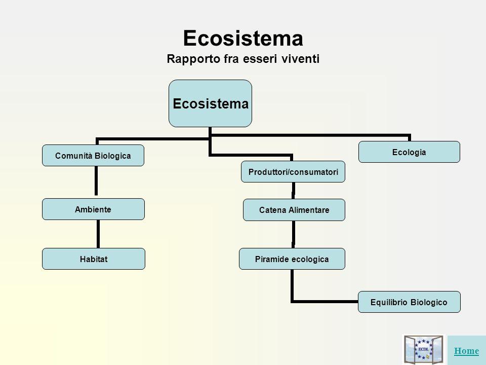 Ecosistema Rapporto fra esseri viventi