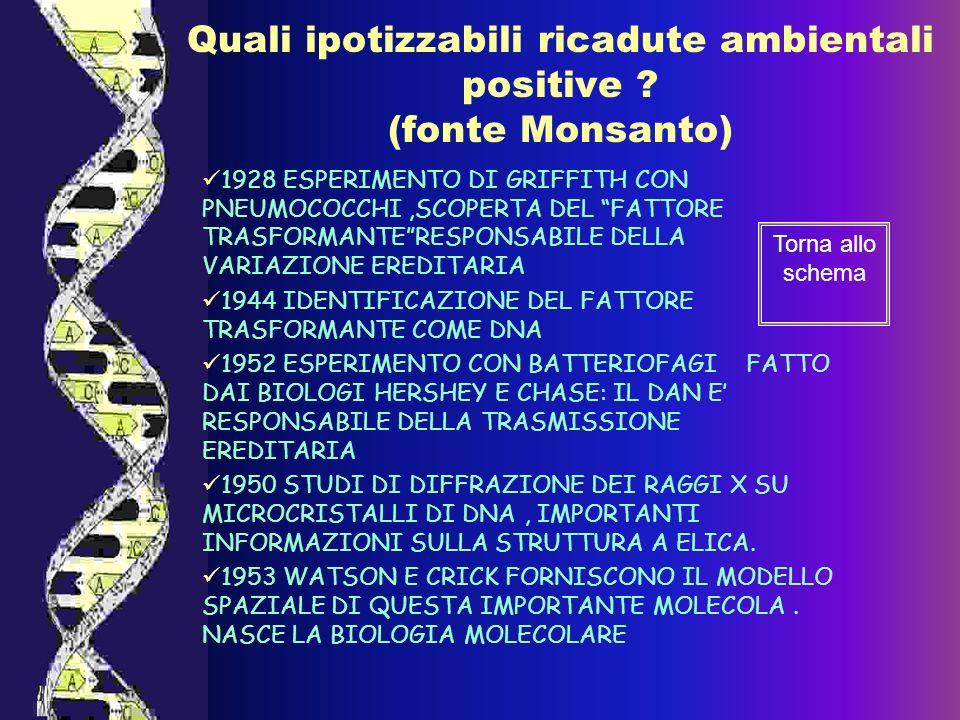 Quali ipotizzabili ricadute ambientali positive (fonte Monsanto)
