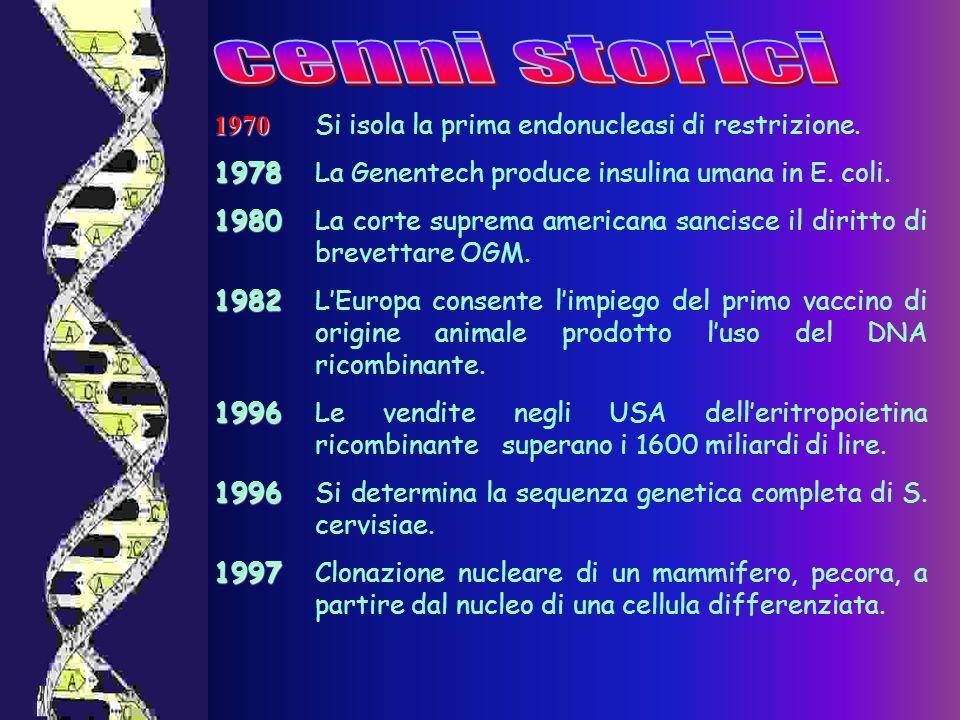 cenni storici 1970 Si isola la prima endonucleasi di restrizione.