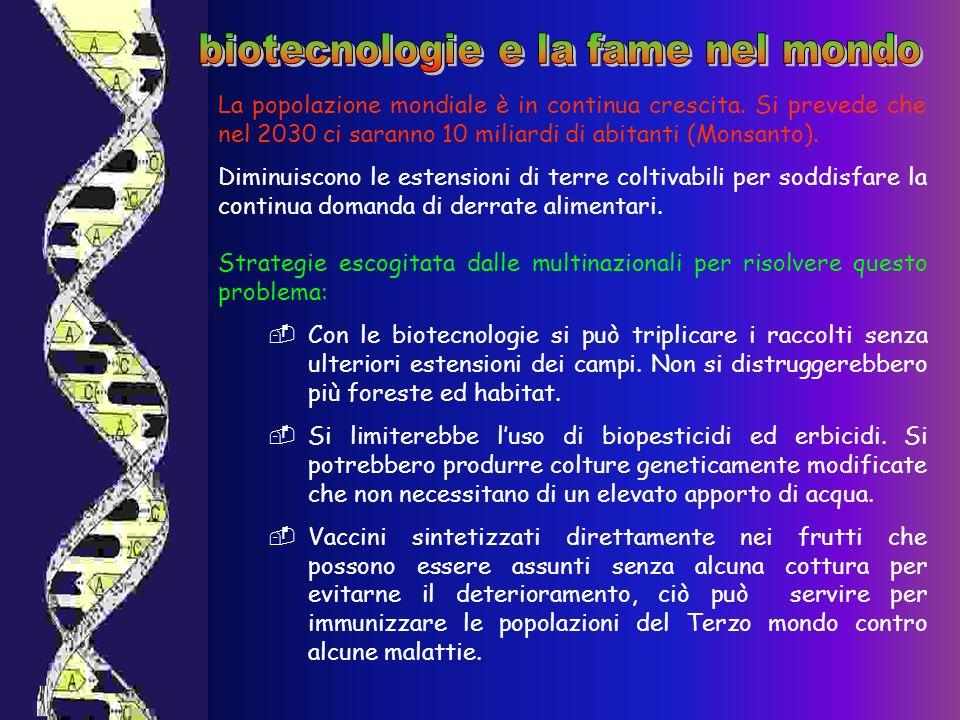 biotecnologie e la fame nel mondo