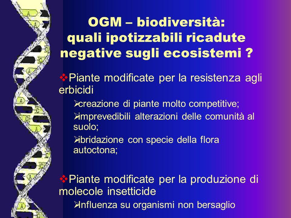 OGM – biodiversità: quali ipotizzabili ricadute negative sugli ecosistemi